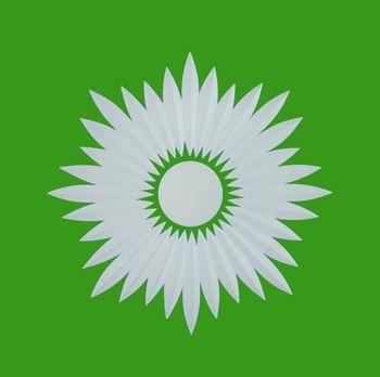 blitz grün