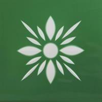Fleur Friesecke grün